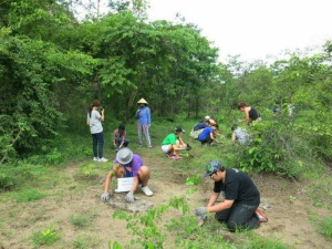 National Forest Conservation Day (1)