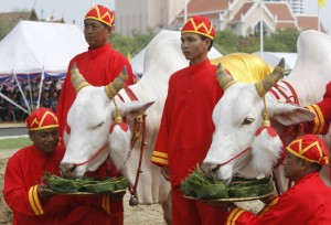 royal-ploughing-ceremony
