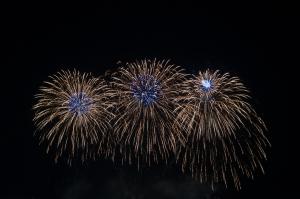 Fireworks (9)